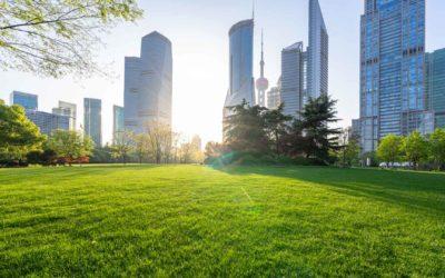 VERTUO, comment bien penser la nature en ville ?