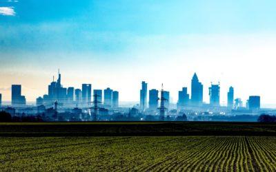 Cueillette Urbaine : Quand l'agriculture part à la conquête des villes !