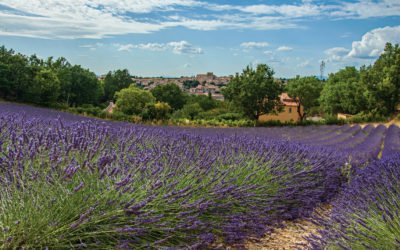 Région Sud-Provence Alpes Côte d'Azur : priorité au confort d'été