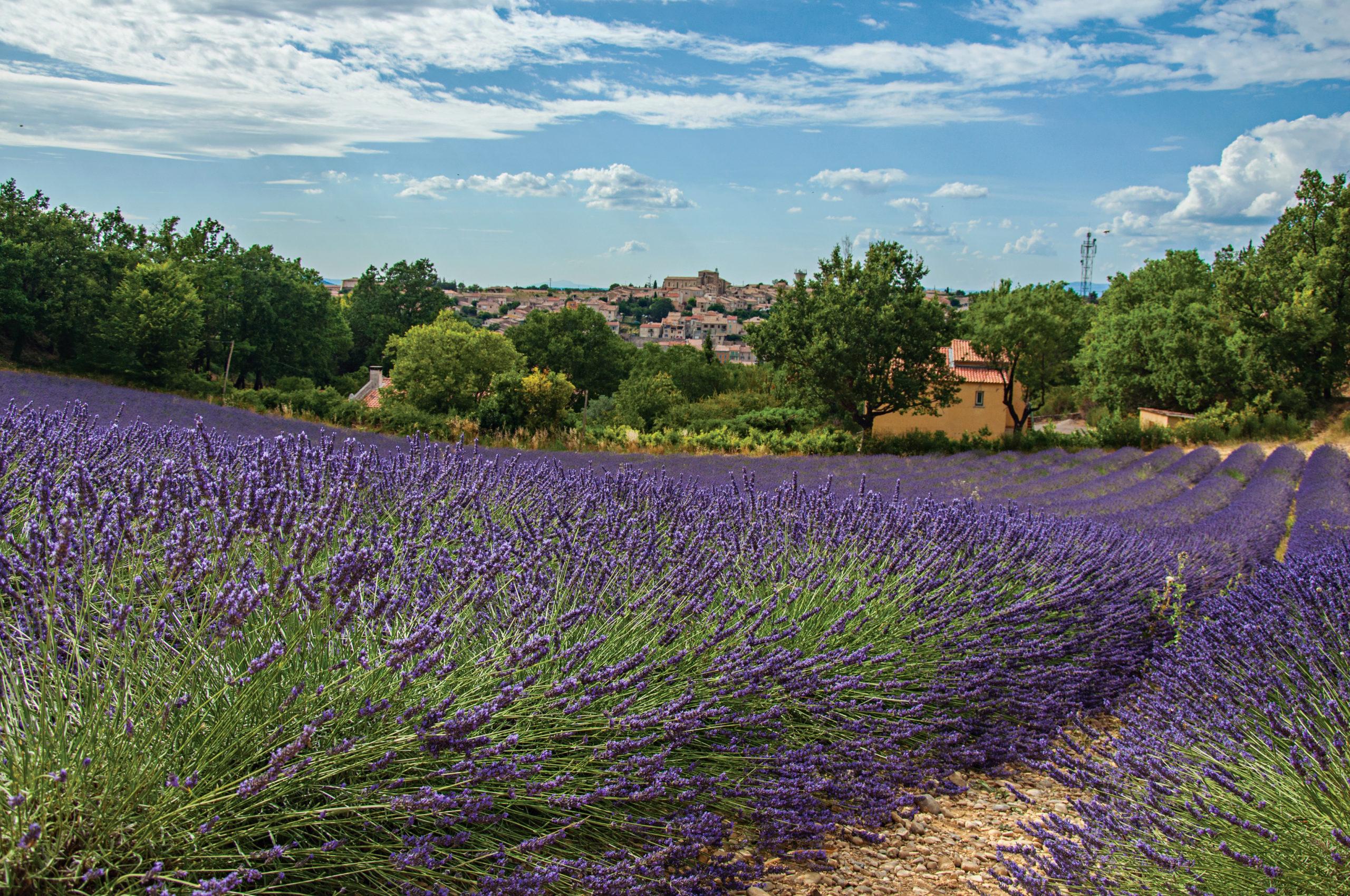 Provence Alpes Côte d'Azur confort thermique